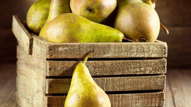 как сохранить урожай груш.