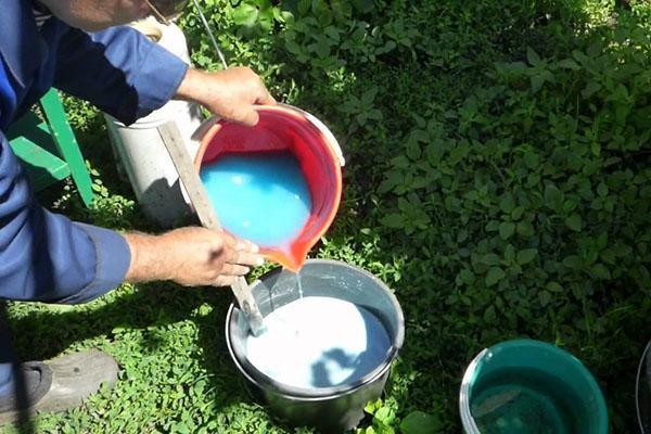 Также можно применять медный купорос и известь. Обработка состава с йодом показывает отличный результат. Для этого 40 капель йода растворяют в ведре воды и опрыскивают деревья.